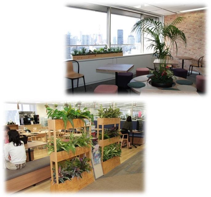 光触媒機能付き人工植物の導入事例1
